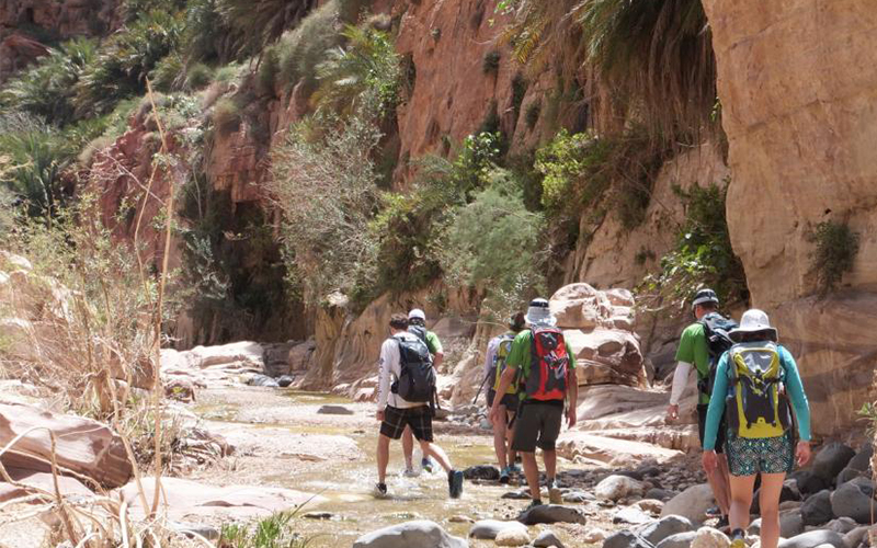 Hike in Wadi Ghweir